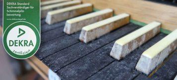 Nahaufnahme einer Orgeltastatur mit starkem Schimmelbefall