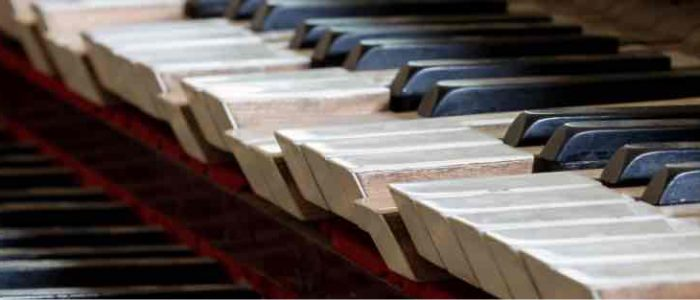 pano-abstract-detail-of-old-broken-and-dusty-organ-keys-P7HXUQ6